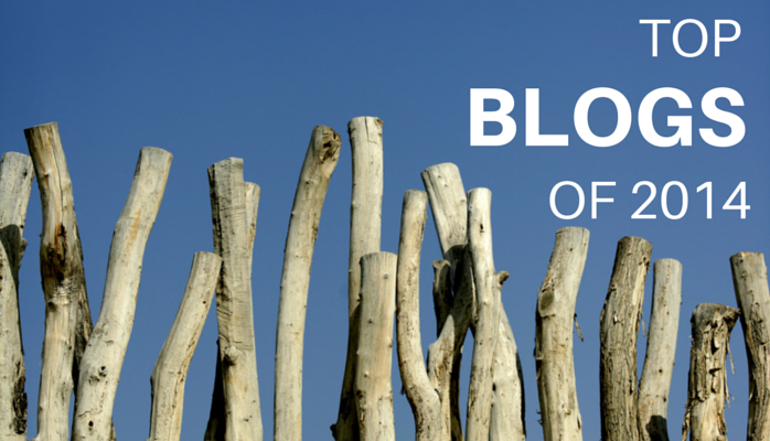 top blogs of 2014