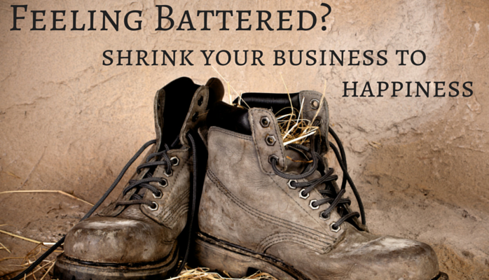 Feeling Battered? Shrink Your Business to Happiness