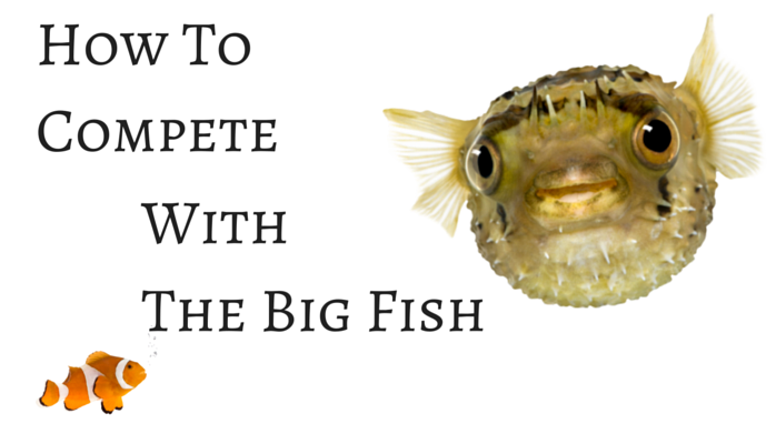 How To Compete With the Big Fish